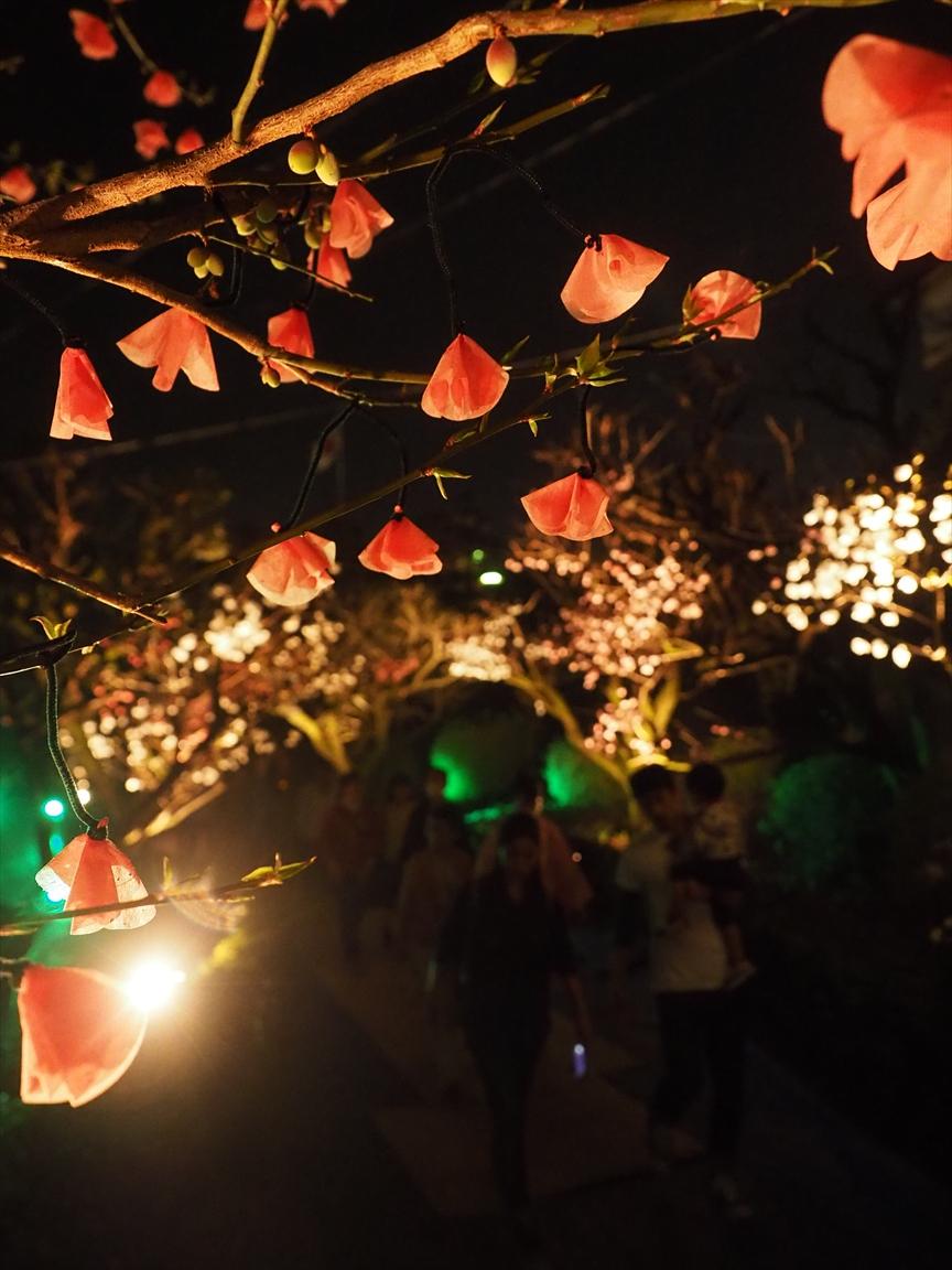 花回廊 梅ノ段