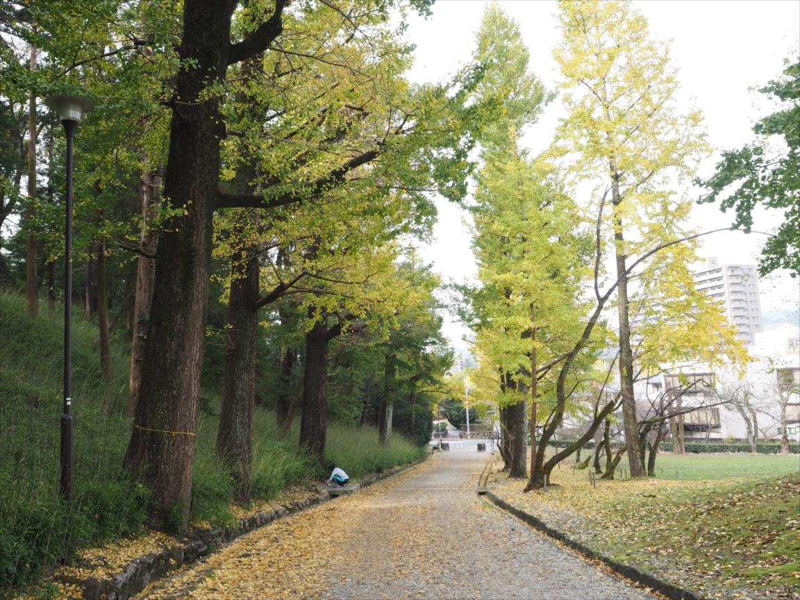 銀杏 紅葉 辷山