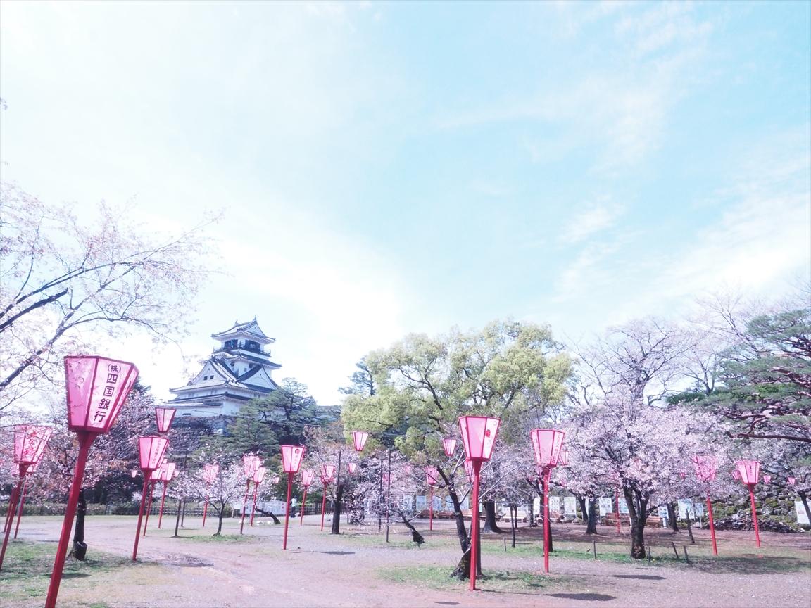 染井吉野 山桜 三ノ丸